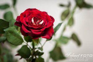 zdjęcia ślubne przygotowania kwiaty